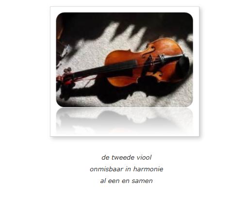 de-tweede-viool
