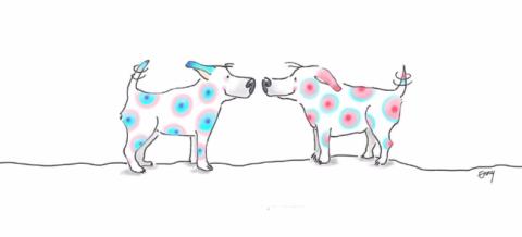 twee-hondjes
