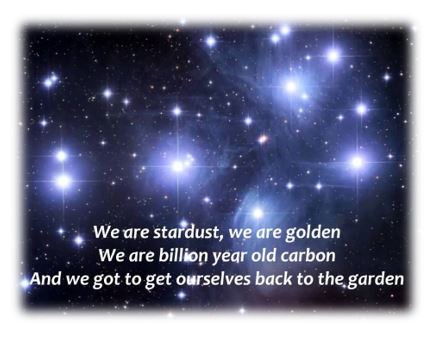 We are stardust Knip
